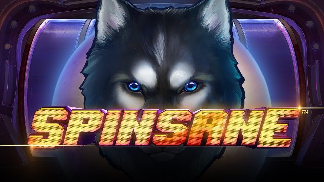 Spinsane1 1
