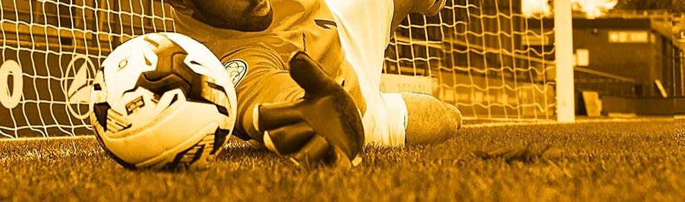 VM-kampanj: 12.00 i odds på att Sverige går vidare